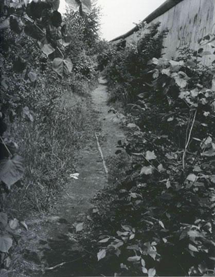 Gossage-Lohmuehlenstr
