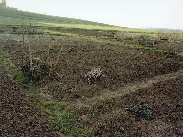 Nieweg-Grabeland,-Haertsfeld,-Schwaebische-Alb-2000.jpg