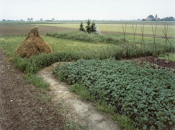 Nieweg-Grabeland,-Krefeld_Oppum-1991.jpg